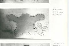 Doku Restaurierung 18(nordwestliche Spiegelkartusche)